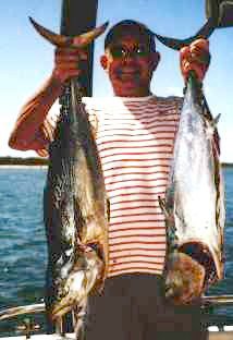 hook up fish bar broadbeach 301 moved permanently the resource has been moved to you should be.