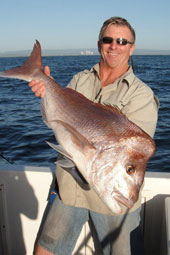 10.3 kg snapper on BKs Gold Coast Fishing Charters